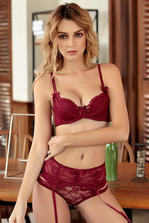 SEXY LACE BRA UNDERWIRE EMBROIDERY LINGERIE BEA AND PANTIES