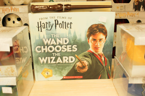 Harry Potter The Wand Choses the Wizzard