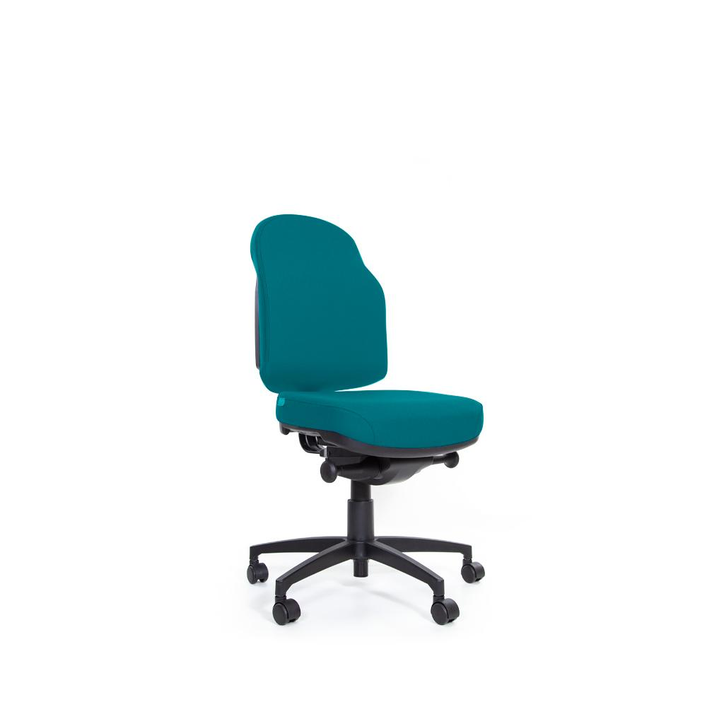 Flexi Plush Auto Mechanism Low Back Chair