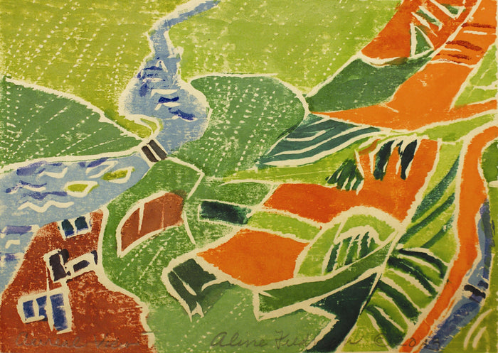 Aerial View Aline Feldman Woodcut The Print Center Landscape Topography Nature