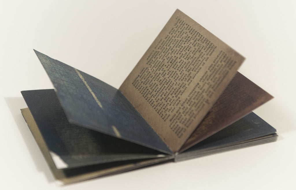 Facts You Should Know About Sound Cyanotype Harrison Walker Book tiny book blue collaged images the print center
