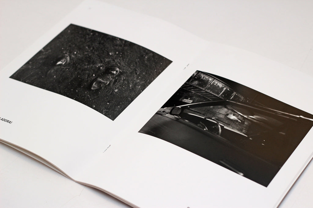 Emma Wilcox: Where it Falls artist book the print center photography