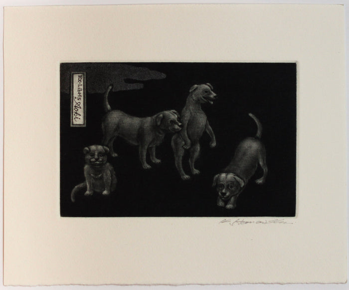 Dogs (Ex Libris) Mezzotint Katsunori Hamanishi the print center black and white animal portraits