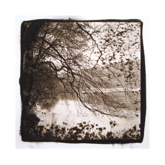 Early Spring platinum palladium print James Syme The print center made in philadelphia landscapes photography
