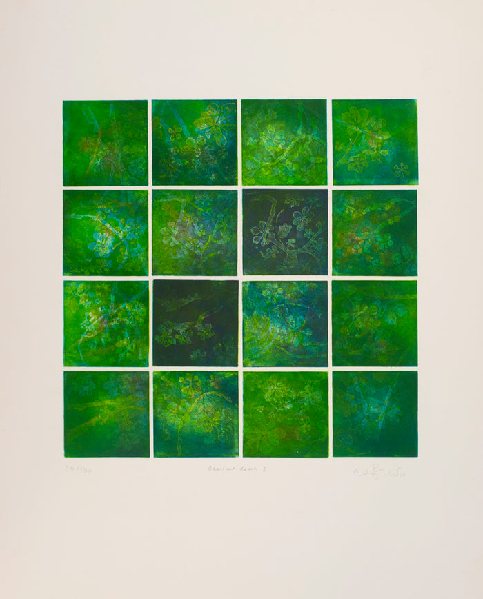 Chestnut Leaves I Etching Anna Jeretic The Print Center green grid squares