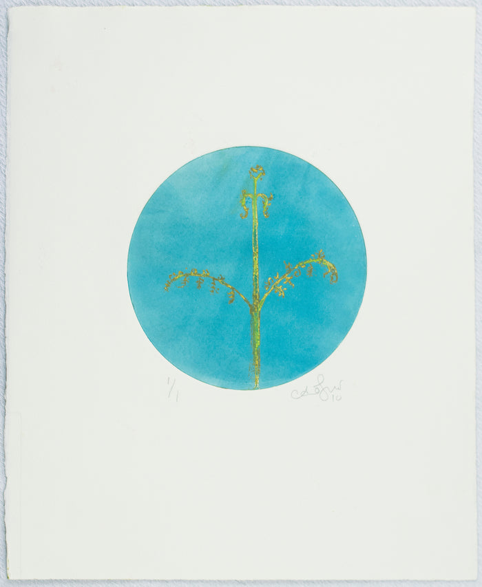 Baby Fern Etching Anna Jeretic The Print Center Blue circle plants nature