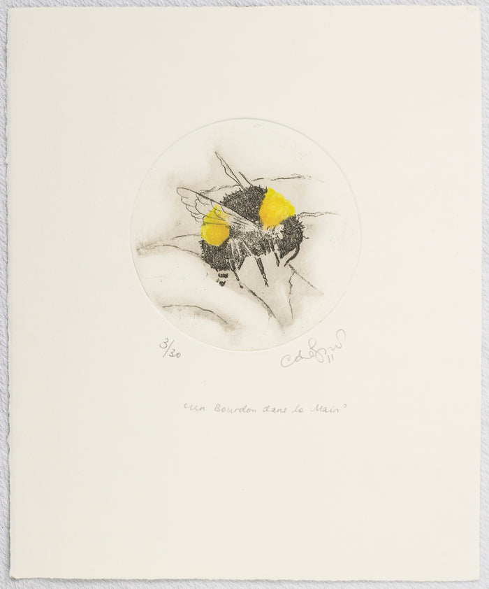 Bumblebee etching monoprint Anna Jeretic The Print Center bees nature insects
