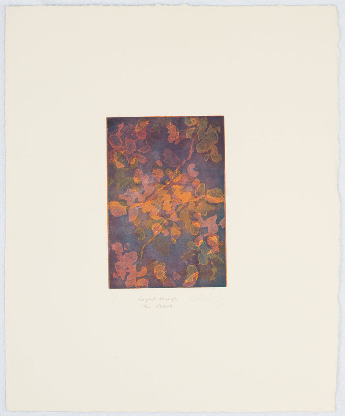 Light Through the Leaves Anna Jeretic Etching the print center color abstraction purple orange green pink fall nature