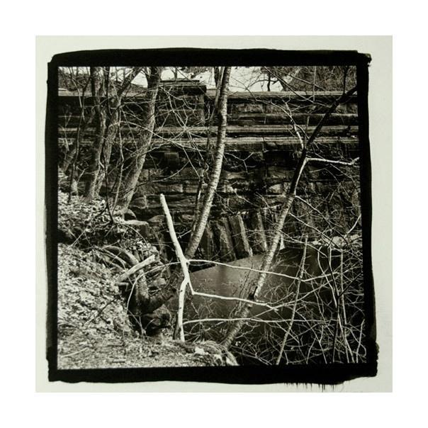 Running Stick, Wissahickon Platinum Palladium Print James Syme creek the print center nature branches water black and white photography