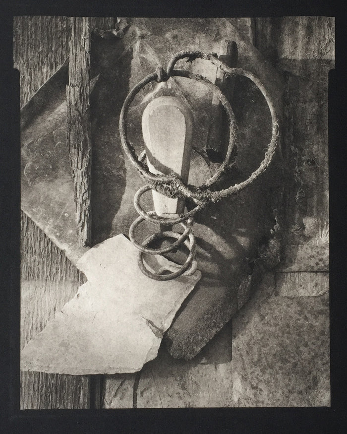 Savannah Still Life Paul Rider Platinum Palladium Print made in Philadelphia the print center