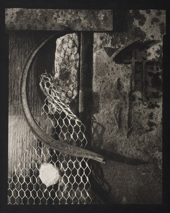 Savannah Still Life netting objects form and line Paul Rider Platinum Palladium Print