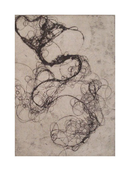 Hairlines 1 Andrea cote Etching Hair in drain wet hair pattern swirls and circles contrast black and white abstraction