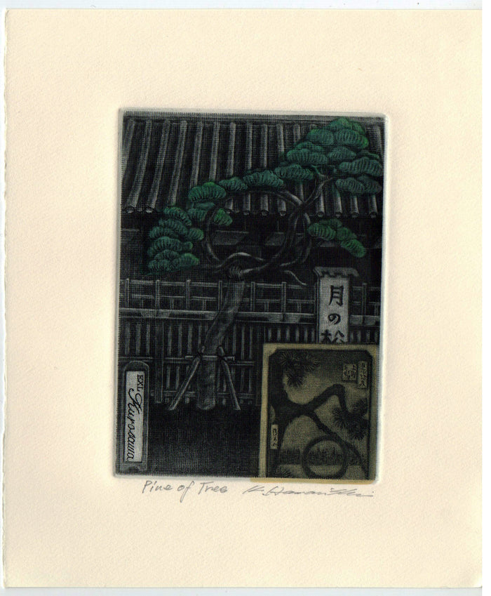 Pine of Tree (Ex Libris) Katsunori Hamanishi Mezzotint japanese art traditional nature