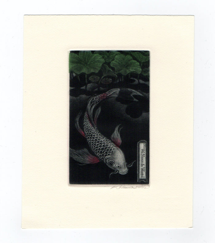 Asagi Butterfly Carp (Ex Libris) Mezzotint Katsunori Hamanishi Fish Trees The Print Center