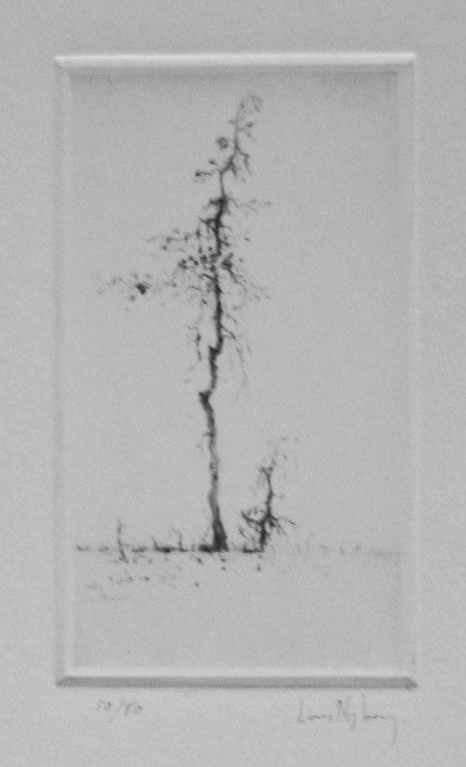 Pine Lars Nyberg Intaglio the print center black and white tree winter