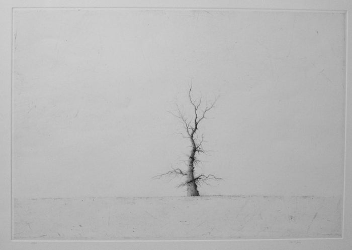 Iraklion Drypoint lars nyberg intaglio contrast black and white little tree