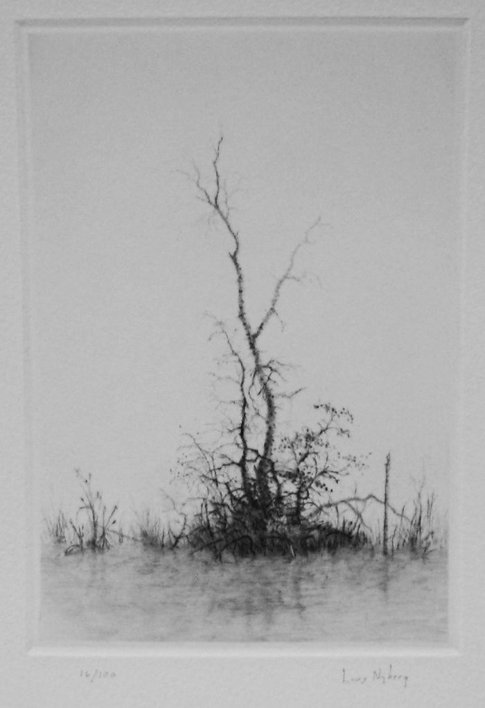 Pacific Lars Nyberg abstraction tree black and white photography intaglio
