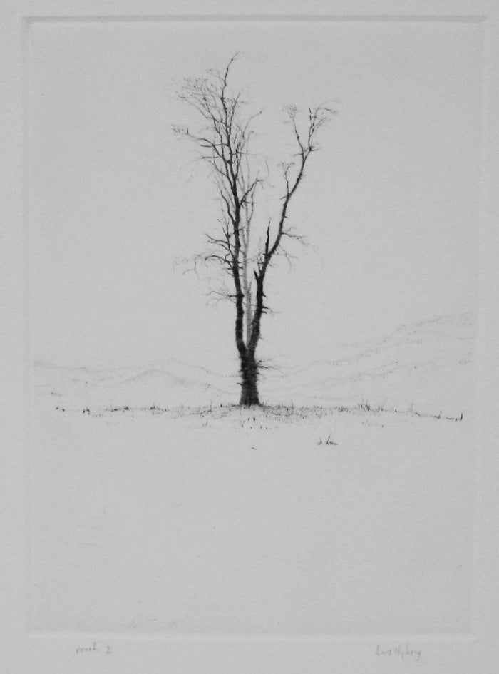 Lonely Tree Drypoint intaglio lars nyberg the print center black and white tree in the snow