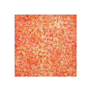 Almost Cooper V Janet Towbin Etching The Print Center Color Based Abstraction Orange and Red