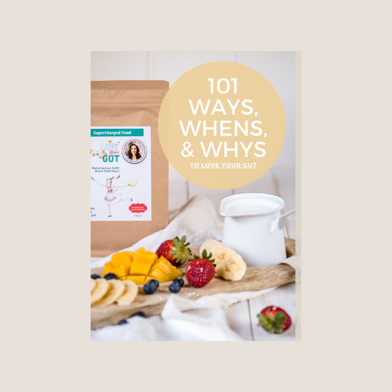 101 WAYS TO LOVE YOUR GUT eBOOK BY LEE HOLMES
