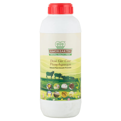Desi Gir Cow Panchagavya - Natural Plant Growth Promoter