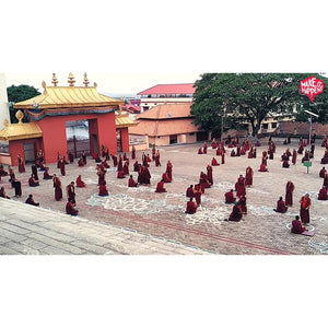 15-17 Aug 2019 : Experience Bylakuppe with the Monks (3-Day All-inclusive package) - Ex Bengaluru