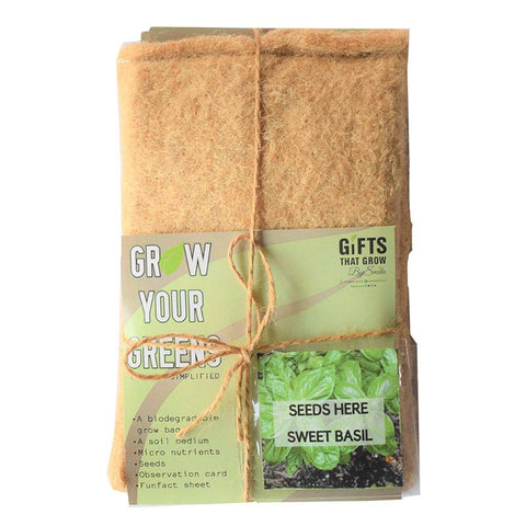 Grow Your Greens Kit: Sweet Basil