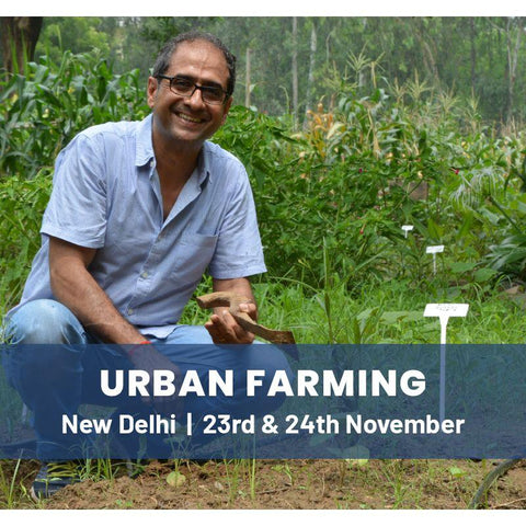 Intensive Urban Farming - 2 day workshop - New Delhi - 23rd and 24th Nov