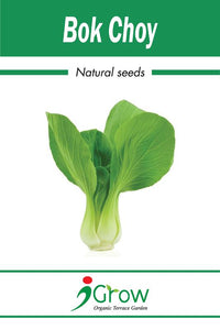 Naturally-Treated Organic Bok Choy Seeds - 50 Seeds Per Pack  (Pack of 2)