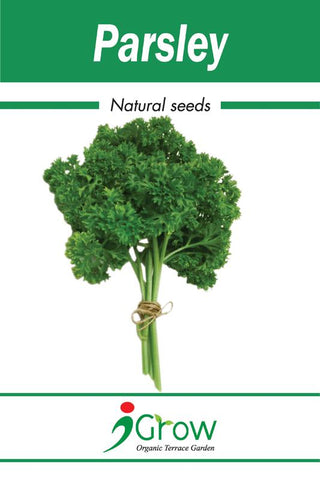 Naturally -Treated Organic Parsley Seeds - 50 Seeds (Pack of 2)