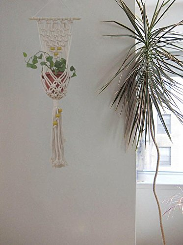 Mehendi - Macrame Wall Hanging and Plant Holder Handmade by Women Artisans