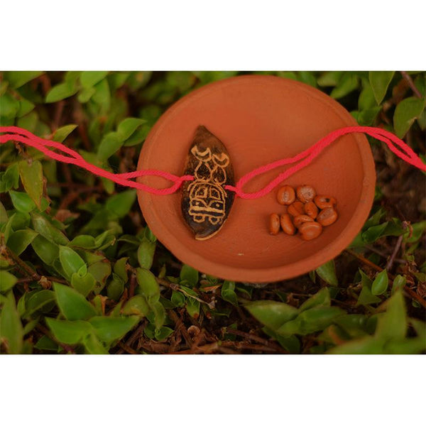 Plantable Seed Rakhi - Pink Cat Sis & Bro (Pack of 2)