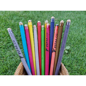Plantable Seed Pencils Made from Recycled Paper (Pack of 50)