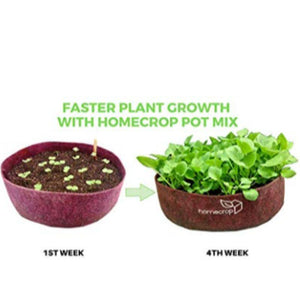 All-Purpose Ready-to-Grow Cocopeat-Based Potting Mix (10kg)