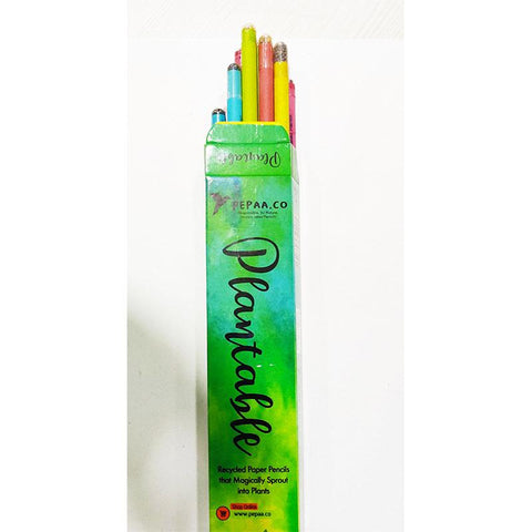 Assorted Recycled Paper Pencils - Set of 4 Packs