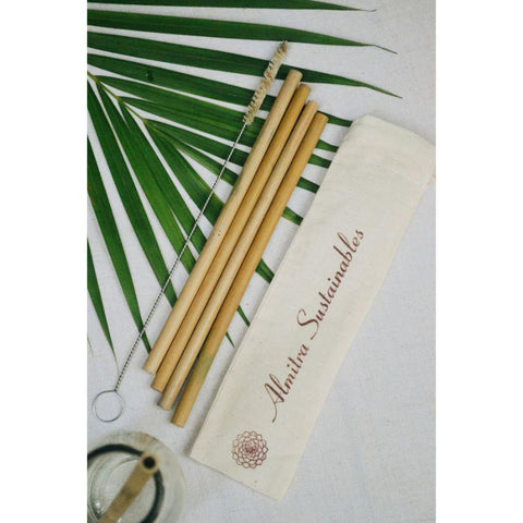 Reusable Bamboo Straws - Pack of 4 with Cleaner