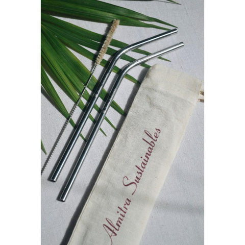 Reusable Stainless Steel Straws - Angled (Pack of 2 with Cleaner)