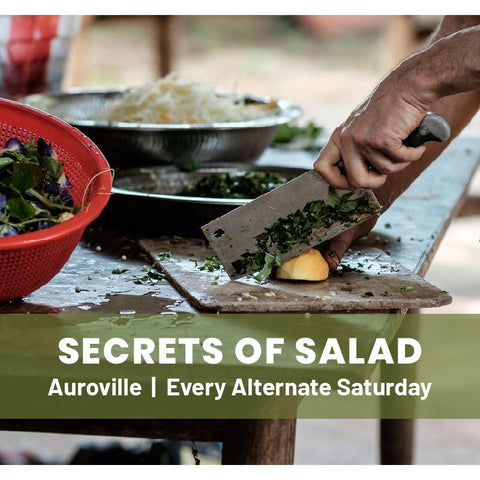 Secrets of Salad Workshop - An Introduction to Permaculture - Auroville