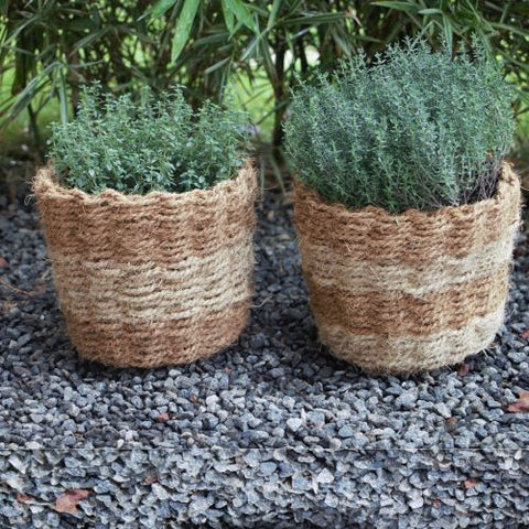 Coir Planter (wev-medium)