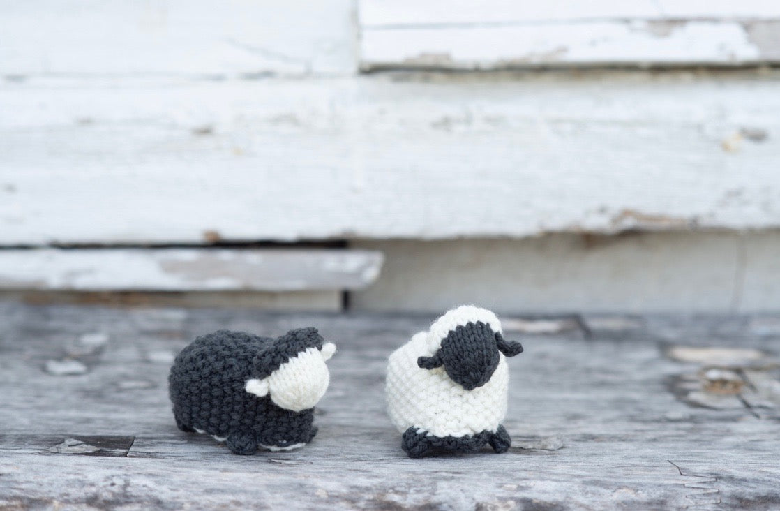 Fall Into Plucky - Friday Afternoon - MATERIALS KIT  Black Sheep, White Sheep Reversible Toy