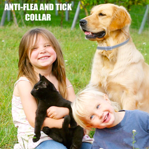 Anti-Flea And Tick Collar