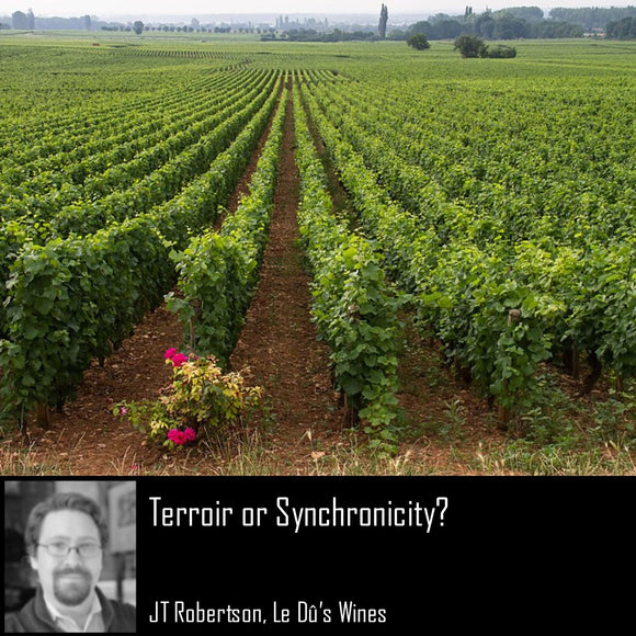 terroir or synchronicity