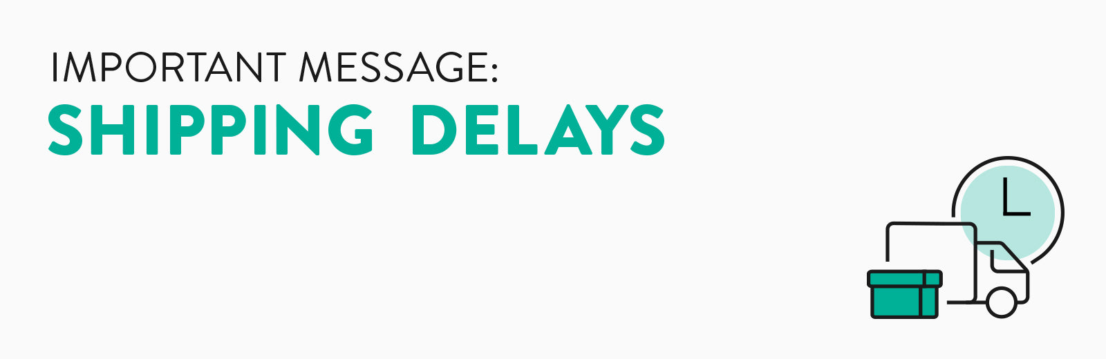 Shipping Delay - important message for our customers