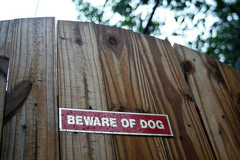 beware of the dog sign | shop now at The Sign Shed