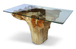 Root Dining Table W/ Glass