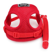 Soft Breathable Mesh Small Dog Harness with Nylon Dog Leash