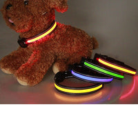 Best Adjustable LED Pet Night Safety Dog Collars  - Cart Hunter