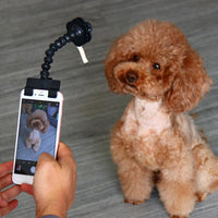 Dog Selfie Stick for pet for All Smart Phone - Cart Hunter