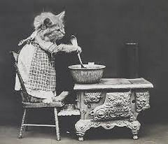 cats dressed as humans