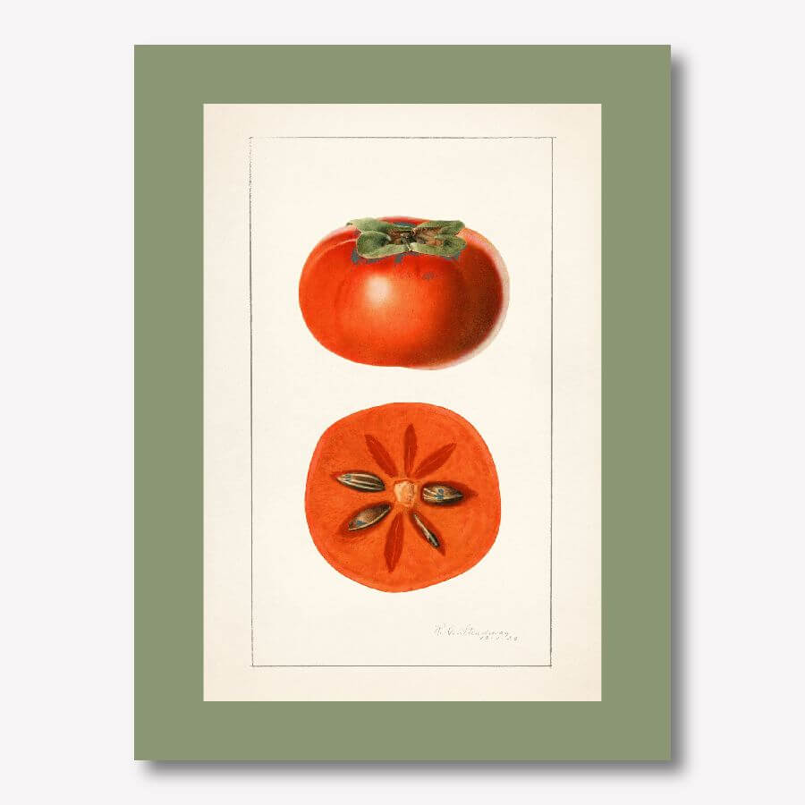 Sharon Fruit Kitchen Wall Decor | FREE USA SHIPPING | www.wallArt.Biz